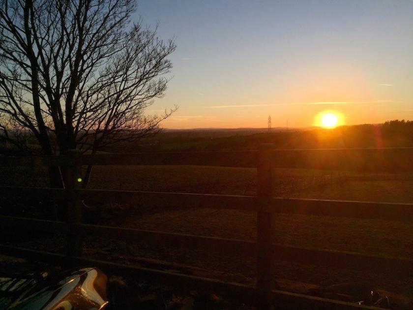 #sundaysevens 396 (1)