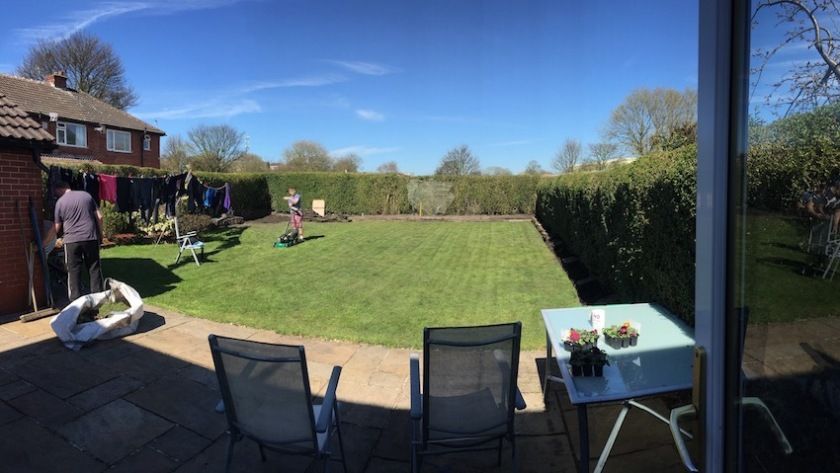 #sundaysevens 541