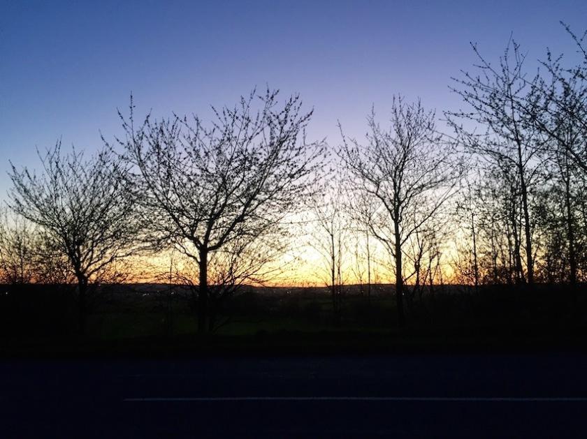 #sundaysevens 572